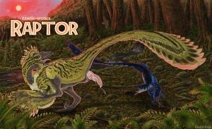 Raptor%20Small_8